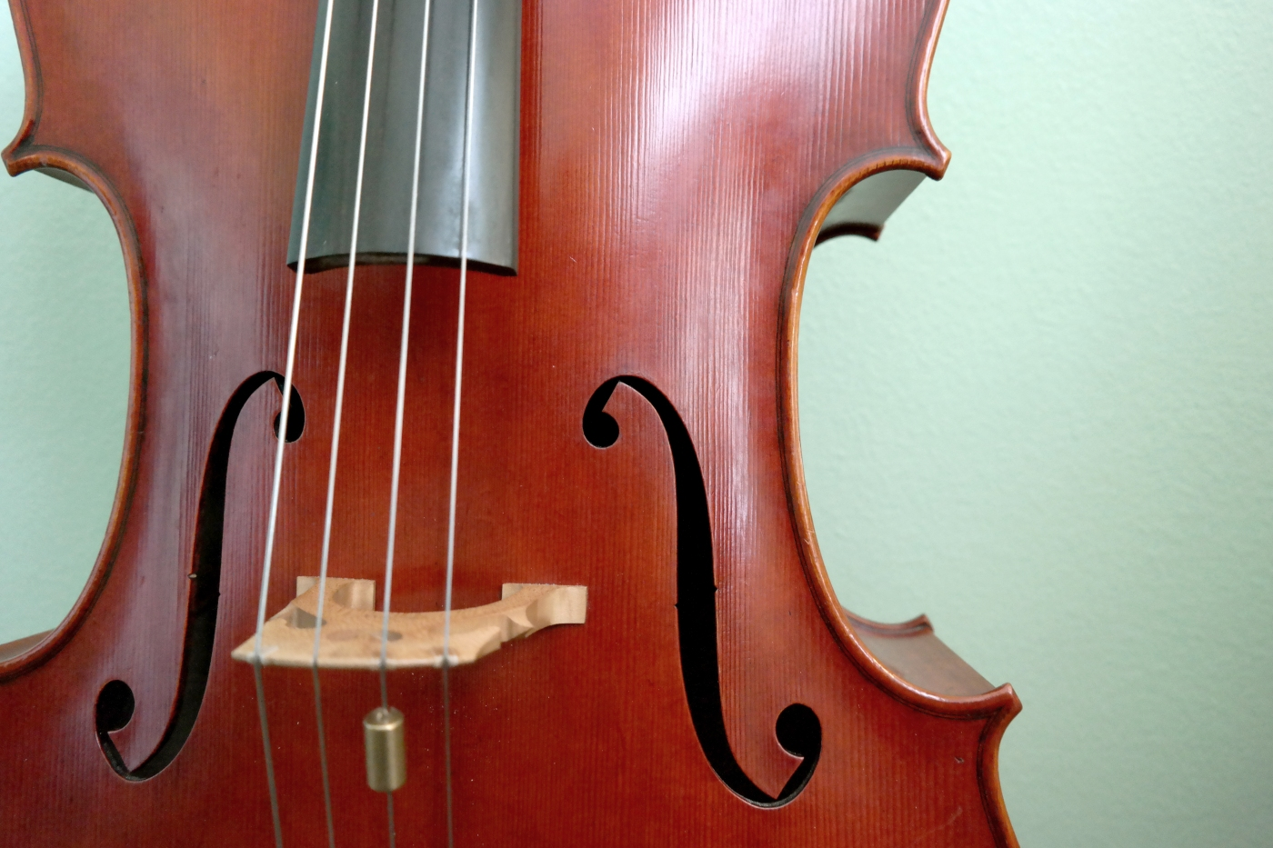 Cello close-up